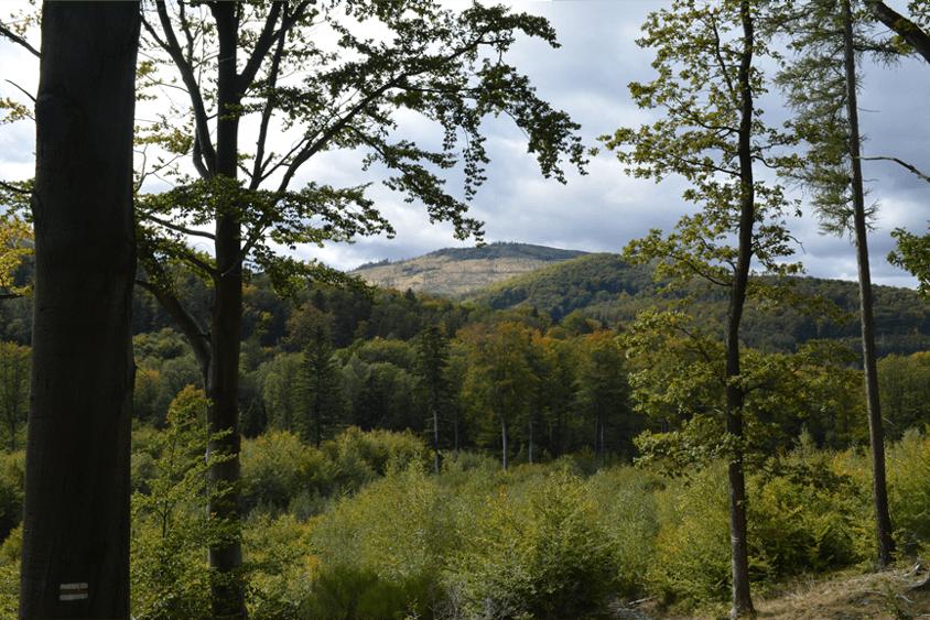 góry_opawskie
